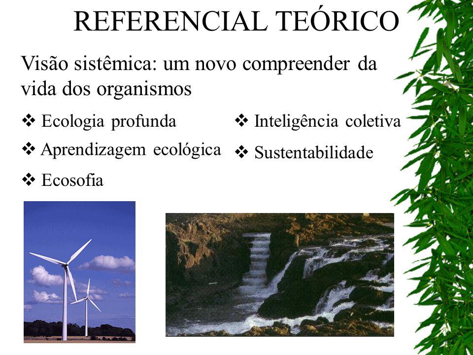 Visão sistêmica: um novo compreender da vida dos organismos REFERENCIAL TEÓRICO Ecologia profunda Inteligência coletiva Aprendizagem ecológica Ecosofi
