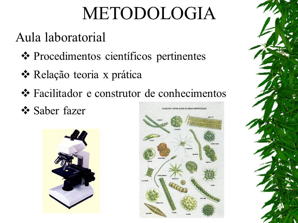 Aula laboratorial Procedimentos científicos pertinentes Facilitador e construtor de conhecimentos Relação teoria x prática Saber fazer METODOLOGIA