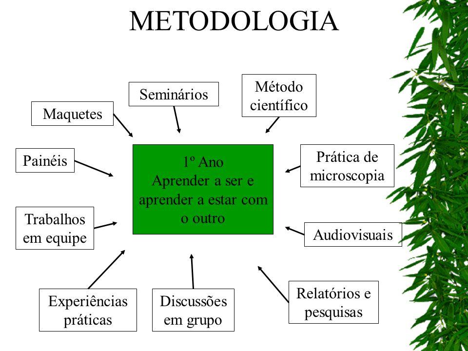 1º Ano Aprender a ser e aprender a estar com o outro Maquetes Seminários Método científico Prática de microscopia Audiovisuais Relatórios e pesquisas