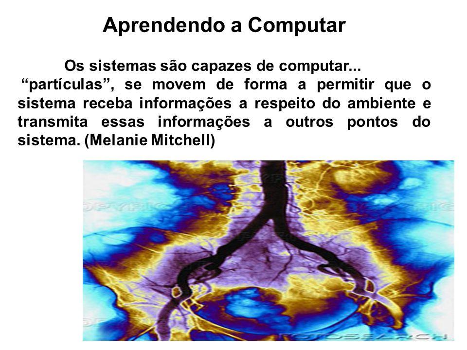 Aprendendo a Computar Os sistemas são capazes de computar... partículas, se movem de forma a permitir que o sistema receba informações a respeito do a