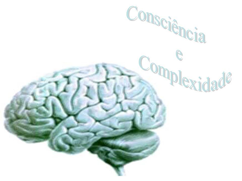 Para compreender a complexidade é necessário definir qual grau de profundidade com que o assunto será abordado – a precisão com que o fenômeno será investigado.