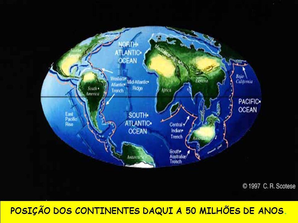 POSIÇÃO DOS CONTINENTES DAQUI A 50 MILHÕES DE ANOS.