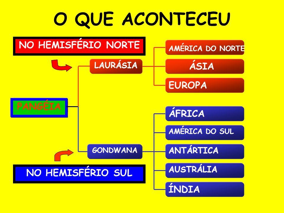 O QUE ACONTECEU PANGÉIA LAURÁSIA GONDWANA AMÉRICA DO NORTE ÁSIA EUROPA ÁFRICA AMÉRICA DO SUL ANTÁRTICA AUSTRÁLIA ÍNDIA NO HEMISFÉRIO SUL NO HEMISFÉRIO NORTE