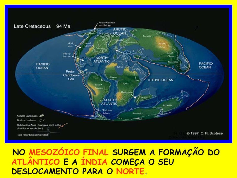 NO MESOZÓICO FINAL SURGEM A FORMAÇÃO DO ATLÂNTICO E A ÍNDIA COMEÇA O SEU DESLOCAMENTO PARA O NORTE.