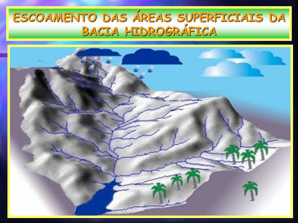 ESCOAMENTO DAS ÁREAS SUPERFICIAIS DA BACIA HIDROGRÁFICA.