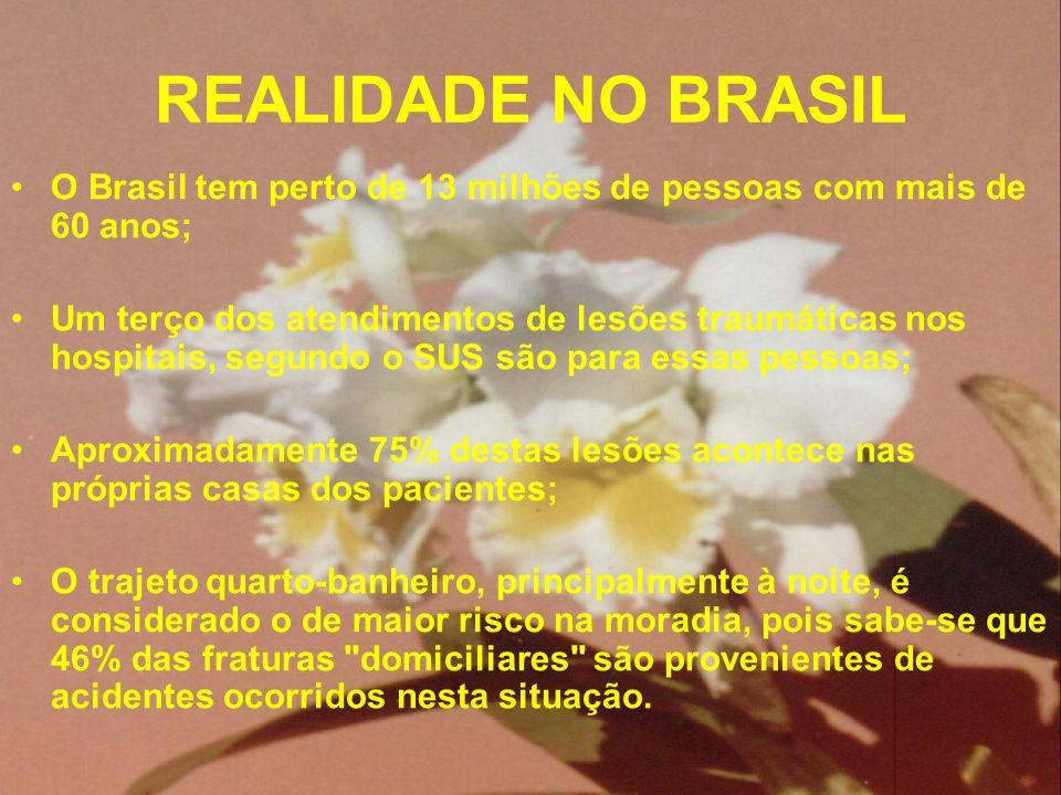 REALIDADE NO BRASIL O Brasil tem perto de 13 milhões de pessoas com mais de 60 anos; Um terço dos atendimentos de lesões traumáticas nos hospitais, se