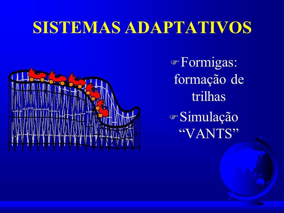 SISTEMAS ADAPTATIVOS F Formigas: formação de trilhas F Simulação VANTS