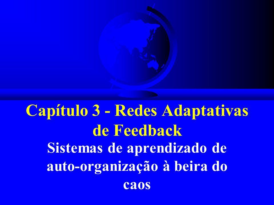 Capítulo 3 - Redes Adaptativas de Feedback Sistemas de aprendizado de auto-organização à beira do caos
