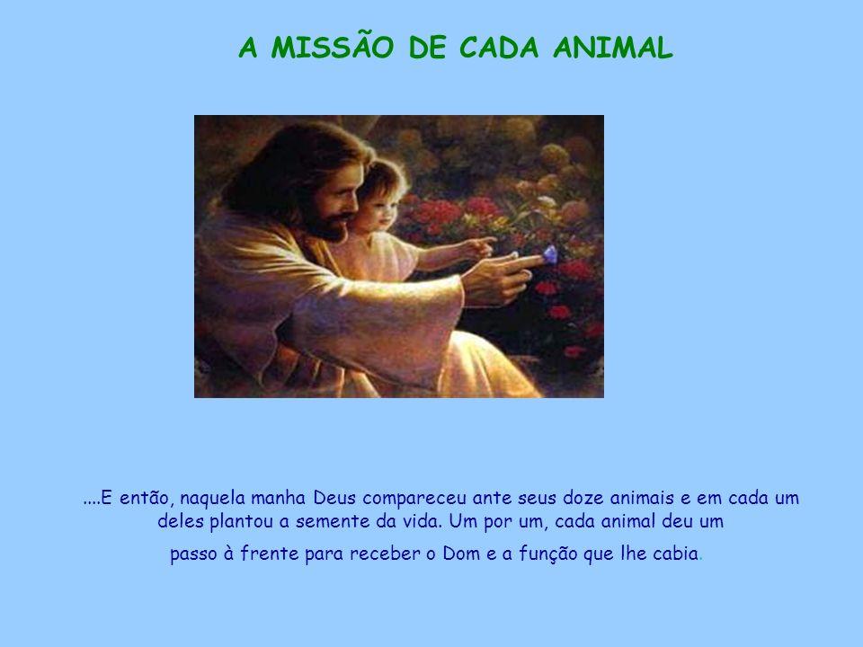 A MISSÃO DE CADA ANIMAL....E então, naquela manha Deus compareceu ante seus doze animais e em cada um deles plantou a semente da vida.