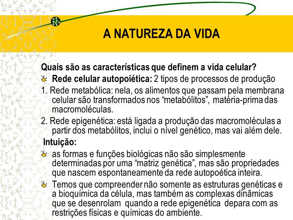 A NATUREZA DA VIDA Quais são as características que definem a vida celular.