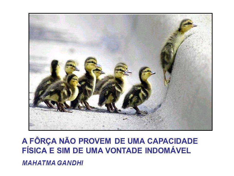 A FÔRÇA NÃO PROVEM DE UMA CAPACIDADE FÍSICA E SIM DE UMA VONTADE INDOMÁVEL MAHATMA GANDHI