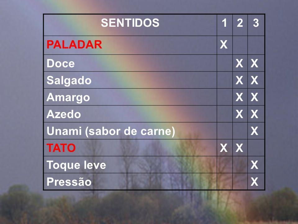 SENTIDOS123 VISÃOX LuzXX CorX VermelhoX VerdeX AzulX AUDIÇÃOXXX OLFATOXX Mais de 2 mil tipos de receptoresX