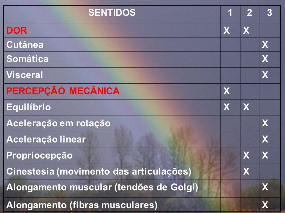 SENTIDOS123 PALADARX DoceXX SalgadoXX AmargoXX AzedoXX Unami (sabor de carne)X TATOXX Toque leveX PressãoX