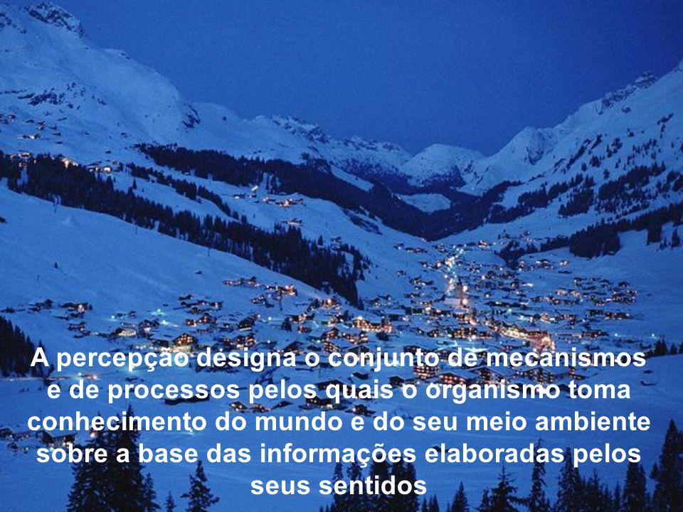 Nosso conhecimento do mundo, principalmente nosso conhecimento prático, é essencialmente baseado nas nossas percepções.