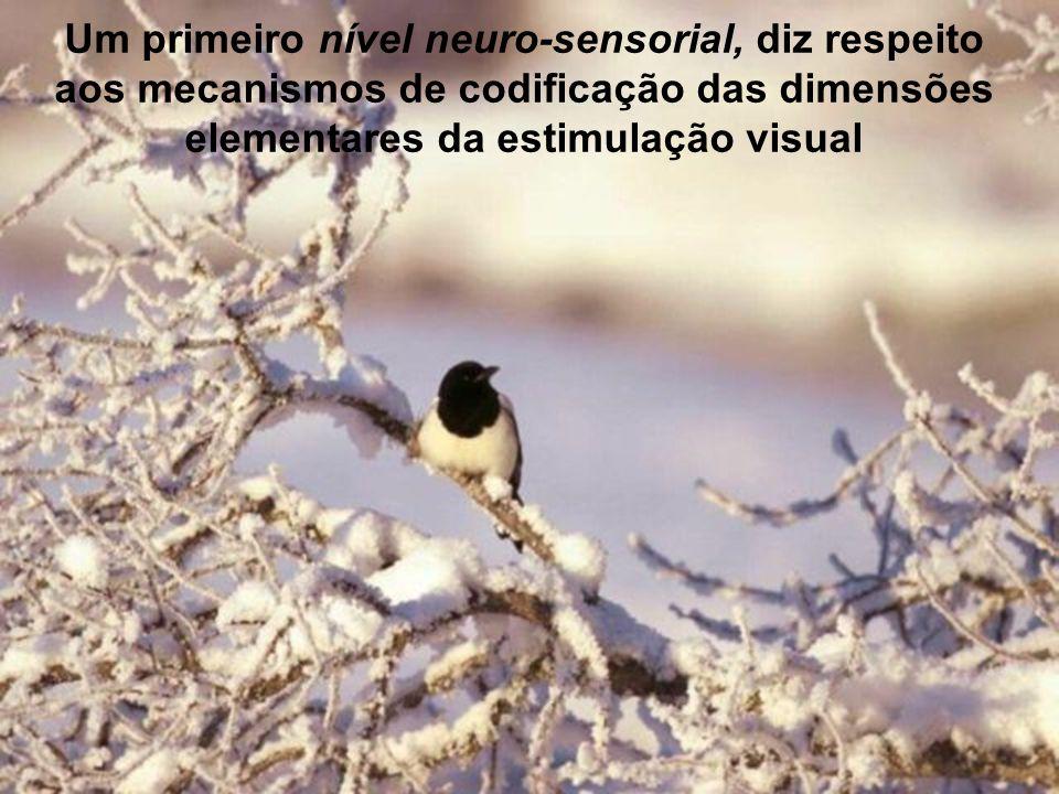 A percepção designa o conjunto de mecanismos e de processos pelos quais o organismo toma conhecimento do mundo e do seu meio ambiente sobre a base das