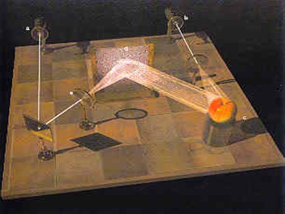 Modelo Holográfico Karl Pribham Pribham e David Bohm: início integração entre Física e Biologia.