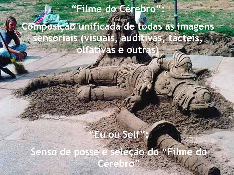 Para solucionar o enigma da mente, é preciso dividi-lo em duas partes: Filme do Cérebro X EU ou Self