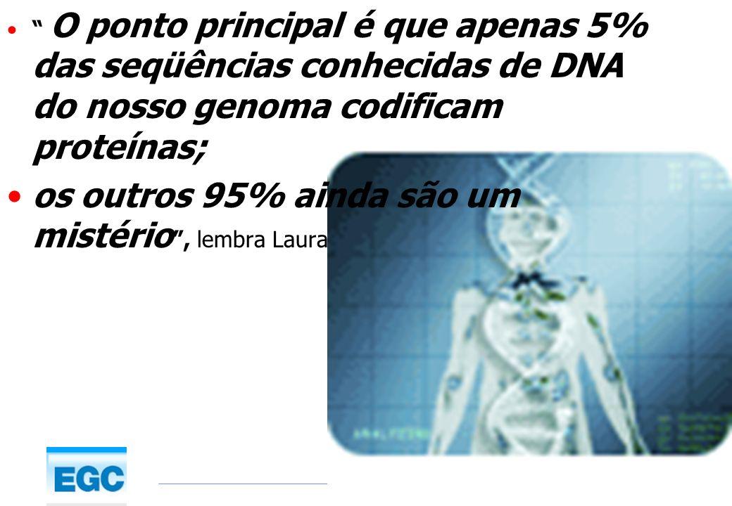 www.egc.ufsc.brwww.egc.ufsc.br 22/1/2014© O ponto principal é que apenas 5% das seqüências conhecidas de DNA do nosso genoma codificam proteínas; os o