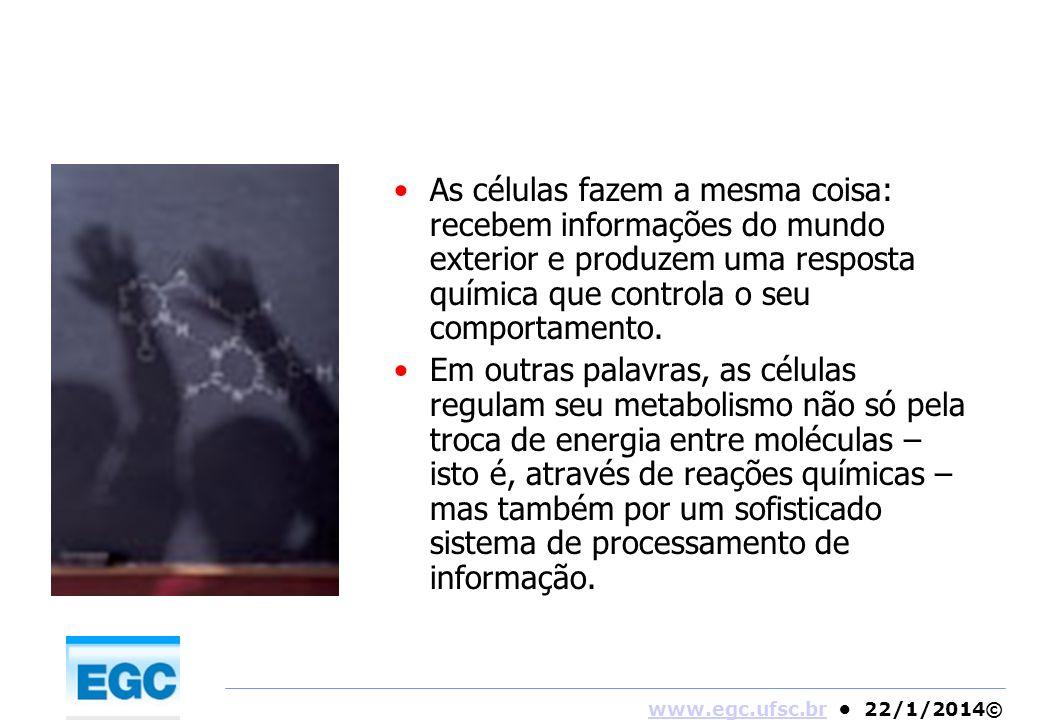 www.egc.ufsc.brwww.egc.ufsc.br 22/1/2014© As células fazem a mesma coisa: recebem informações do mundo exterior e produzem uma resposta química que co