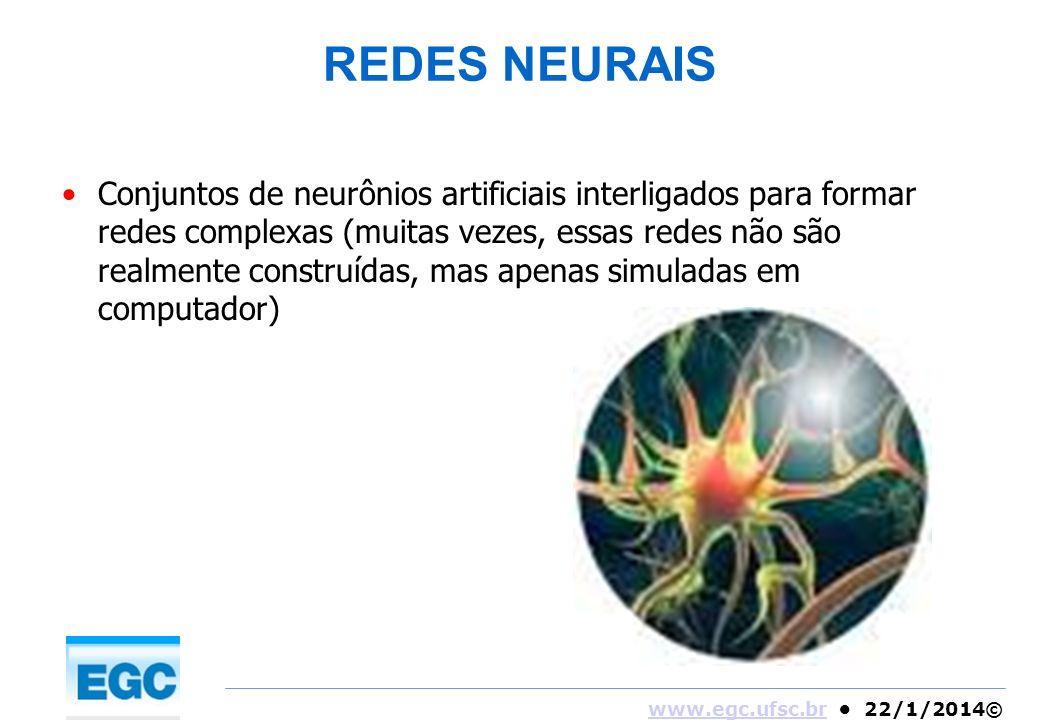 www.egc.ufsc.brwww.egc.ufsc.br 22/1/2014© REDES NEURAIS Conjuntos de neurônios artificiais interligados para formar redes complexas (muitas vezes, ess