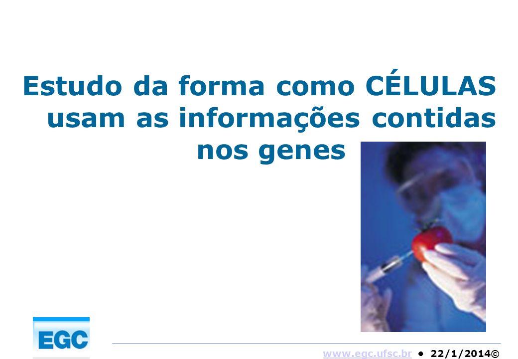 www.egc.ufsc.brwww.egc.ufsc.br 22/1/2014© Estudo da forma como CÉLULAS usam as informações contidas nos genes