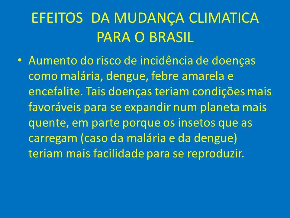 EFEITOS DA MUDANÇA CLIMATICA PARA O BRASIL Existe a possibilidade que pessoas morram como conseqüência das ondas de calor, especialmente crianças e idosos.