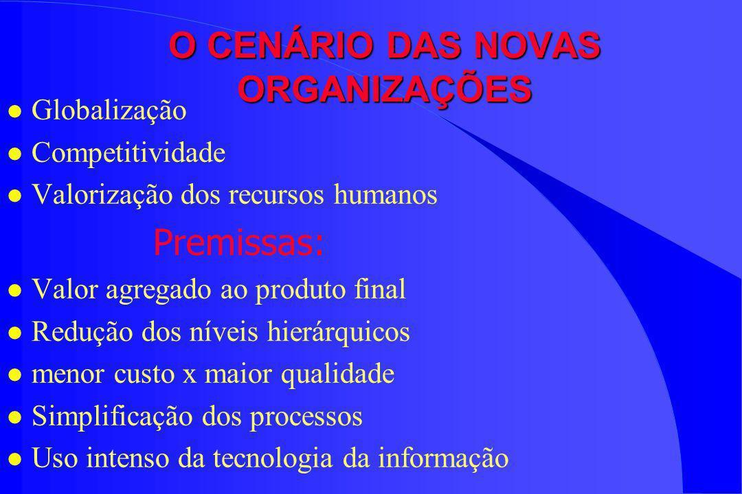 O CENÁRIO DAS NOVAS ORGANIZAÇÕES l Globalização l Competitividade l Valorização dos recursos humanos Premissas: l Valor agregado ao produto final l Re