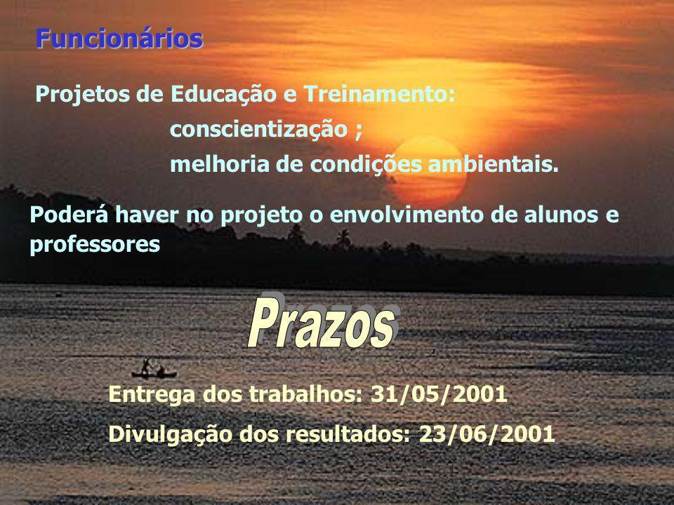 Projetos de Educação e Treinamento: conscientização ; melhoria de condições ambientais. Funcionários Entrega dos trabalhos: 31/05/2001 Divulgação dos