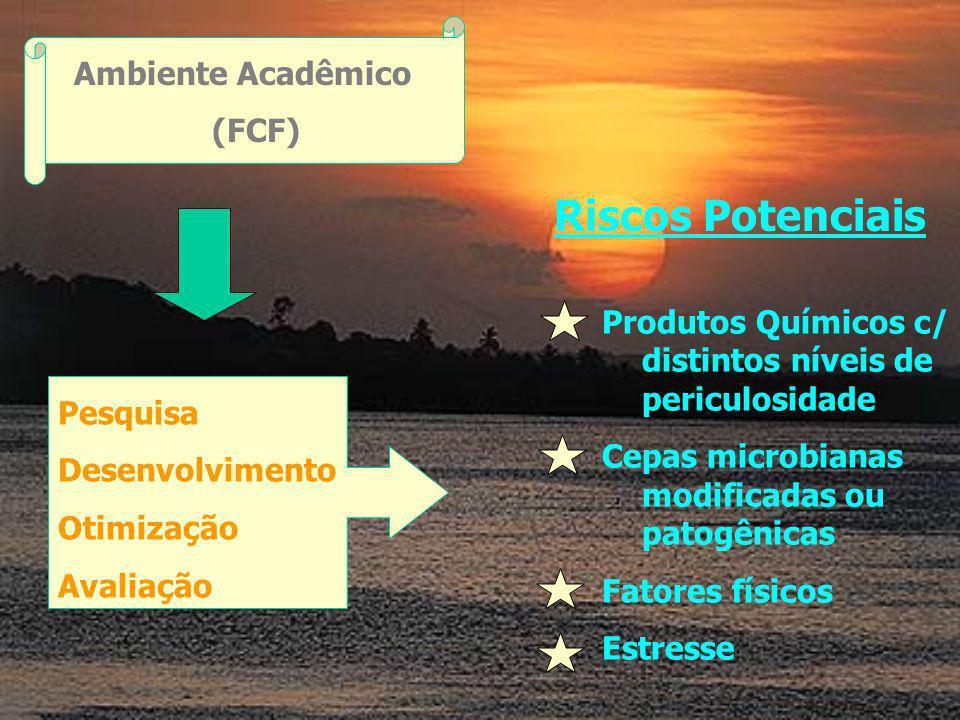 Ambiente Acadêmico (FCF) Riscos Potenciais Produtos Químicos c/ distintos níveis de periculosidade Cepas microbianas modificadas ou patogênicas Fatores físicos Estresse Pesquisa Desenvolvimento Otimização Avaliação
