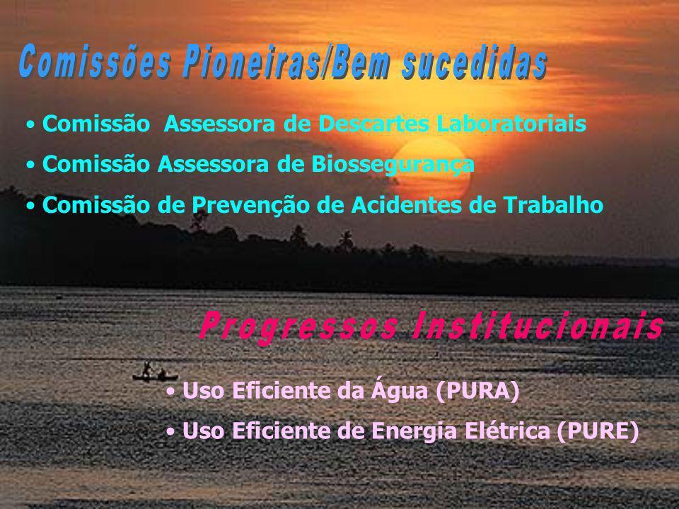 Comissão Assessora de Descartes Laboratoriais Comissão Assessora de Biossegurança Comissão de Prevenção de Acidentes de Trabalho Uso Eficiente da Água (PURA) Uso Eficiente de Energia Elétrica (PURE)