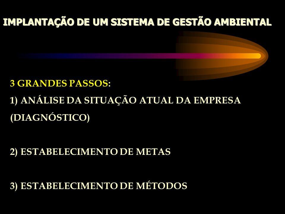 IMPLANTAÇÃO DE UM SISTEMA DE GESTÃO AMBIENTAL 3 GRANDES PASSOS: 1) ANÁLISE DA SITUAÇÃO ATUAL DA EMPRESA (DIAGNÓSTICO) 2) ESTABELECIMENTO DE METAS 3) E