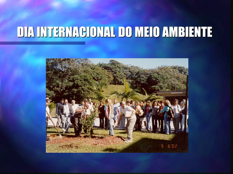 DIA INTERNACIONAL DO MEIO AMBIENTE