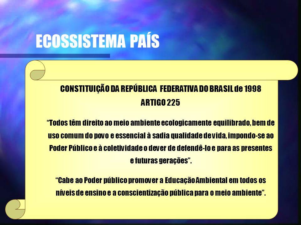 ECOSSISTEMA PAÍS CONSTITUIÇÃO DA REPÚBLICA FEDERATIVA DO BRASIL de 1998 ARTIGO 225 Todos têm direito ao meio ambiente ecologicamente equilibrado, bem