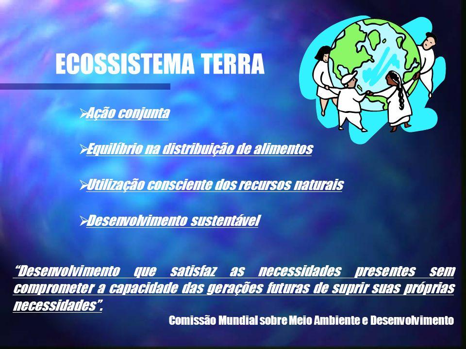 ECOSSISTEMA TERRA Ação conjunta Equilíbrio na distribuição de alimentos Utilização consciente dos recursos naturais Desenvolvimento sustentável Desenv