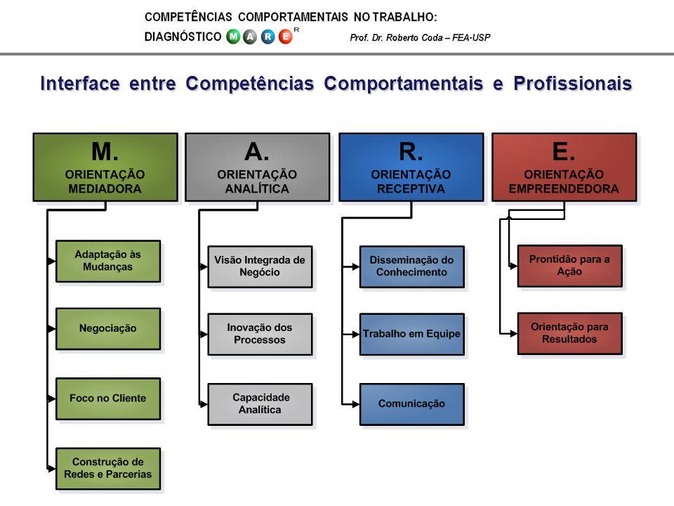 Interface entre Competências Comportamentais e Profissionais