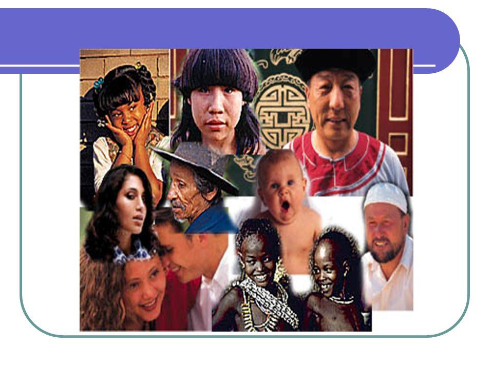 U.E: Mapear e conhecer a Rede de Proteção Local; Participar da Rede de Proteção; Conhecer os serviços e fluxos para encaminhamentos; Plano Estratégico de Ação - 2013