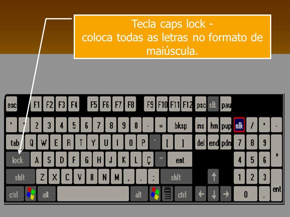 Tecla shift - quando pressionada em conjunto com as teclas de letras, digita letra maiúscula ou o sinal da parte de cima de uma tecla.