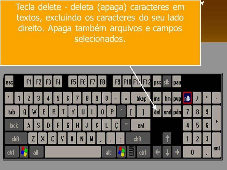 Tecla delete - deleta (apaga) caracteres em textos, excluindo os caracteres do seu lado direito. Apaga também arquivos e campos selecionados.