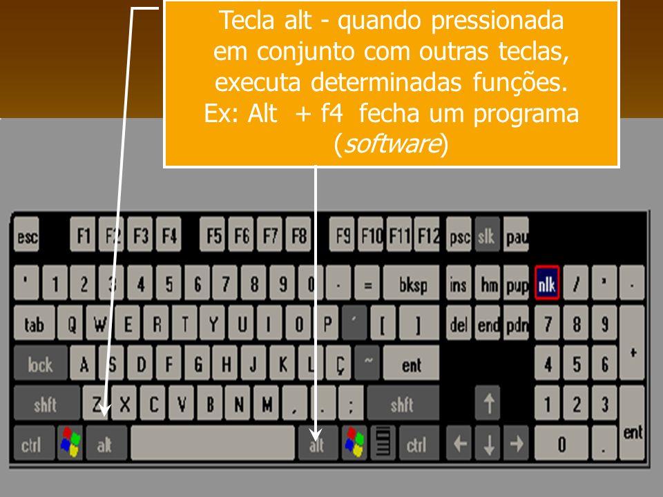 Tecla alt - quando pressionada em conjunto com outras teclas, executa determinadas funções. Ex: Alt + f4 fecha um programa (software)