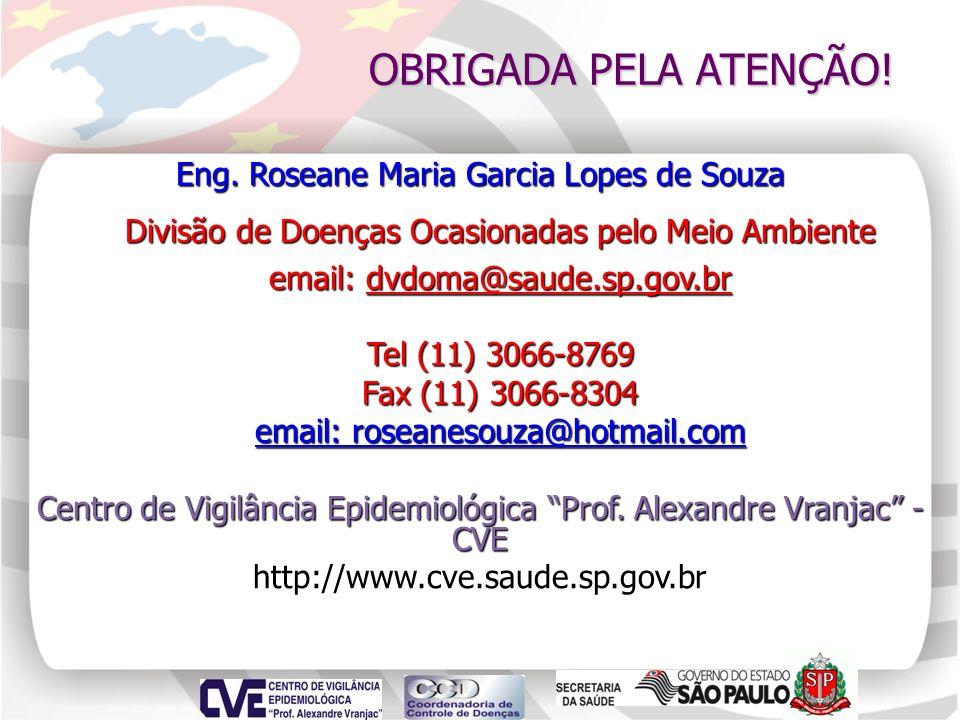Eng. Roseane Maria Garcia Lopes de Souza Divisão de Doenças Ocasionadas pelo Meio Ambiente Divisão de Doenças Ocasionadas pelo Meio Ambiente email: dv