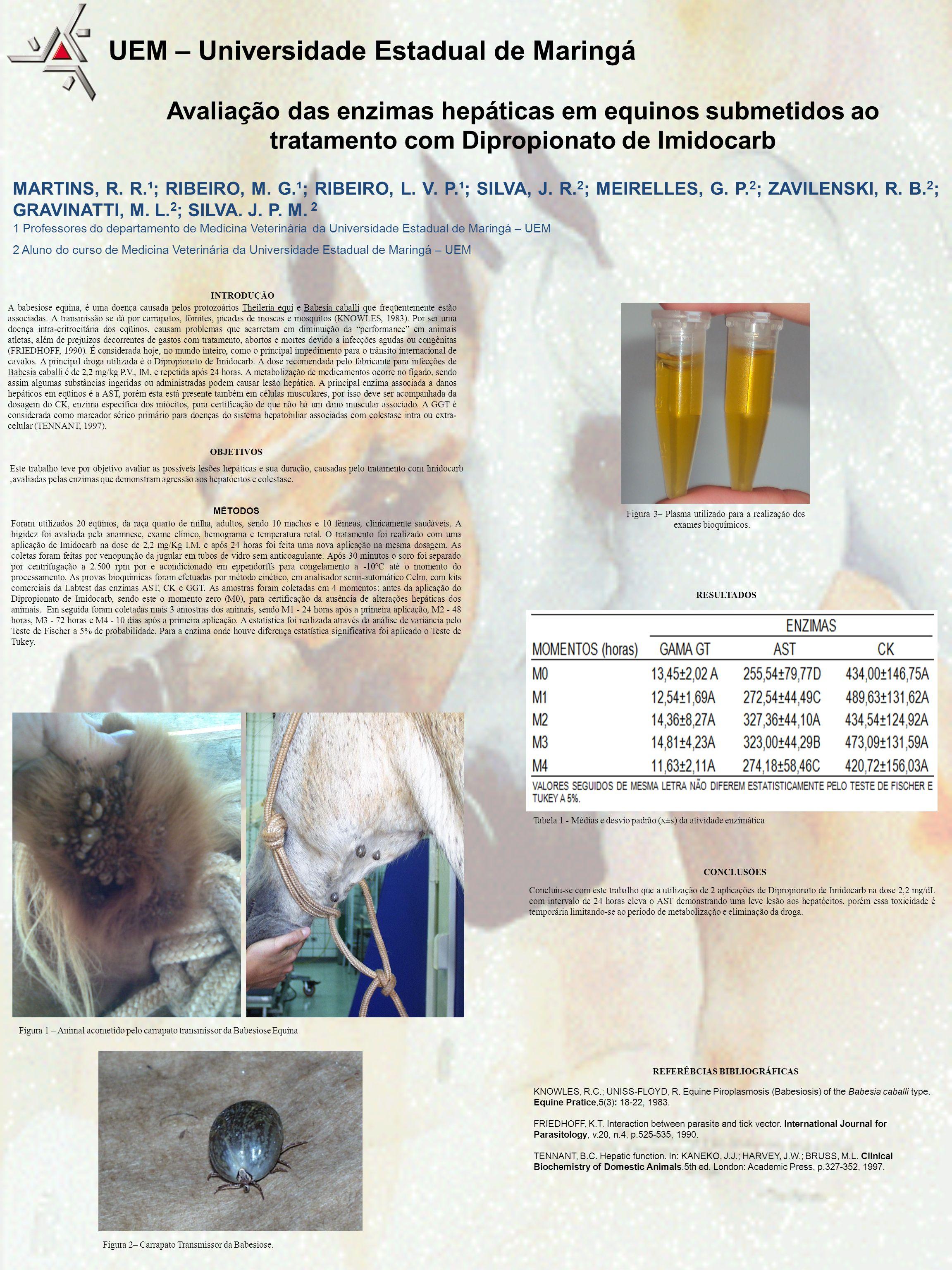 Avaliação das enzimas hepáticas em equinos submetidos ao tratamento com Dipropionato de Imidocarb MARTINS, R. R.¹; RIBEIRO, M. G.¹; RIBEIRO, L. V. P.¹