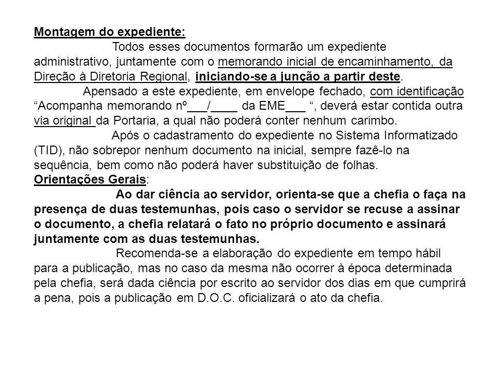 Montagem do expediente: Todos esses documentos formarão um expediente administrativo, juntamente com o memorando inicial de encaminhamento, da Direção