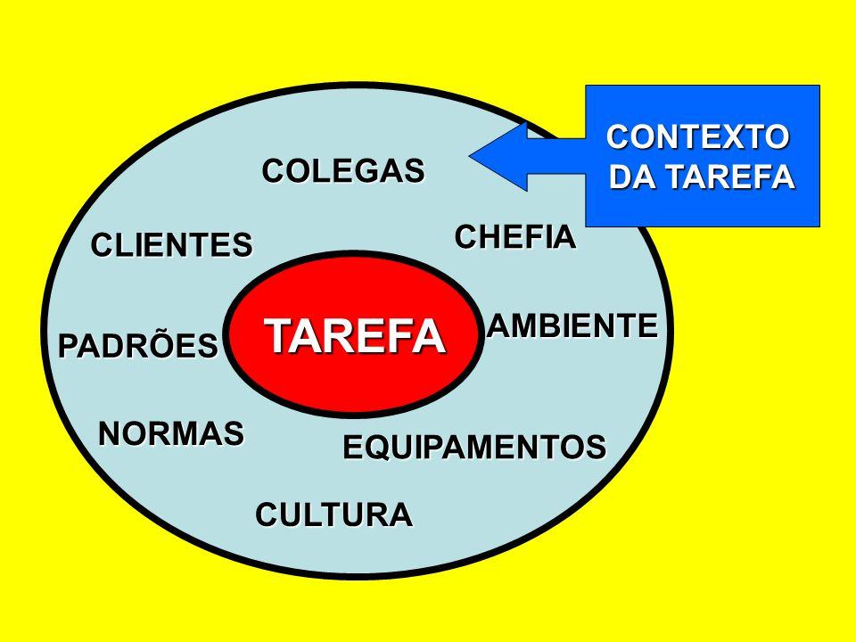 TAREFA COLEGAS PADRÕES CULTURA NORMAS AMBIENTE EQUIPAMENTOS CLIENTES CHEFIA CONTEXTO DA TAREFA
