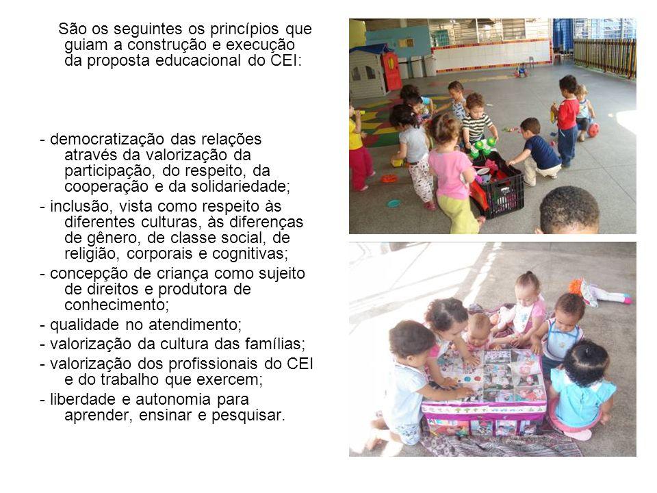 São os seguintes os princípios que guiam a construção e execução da proposta educacional do CEI: - democratização das relações através da valorização