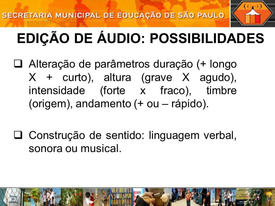 Importação de arquivos de áudio em formatos comprimidos (MP3, WMA, OGG) e não-comprimidos (WAV, AIF, AU).