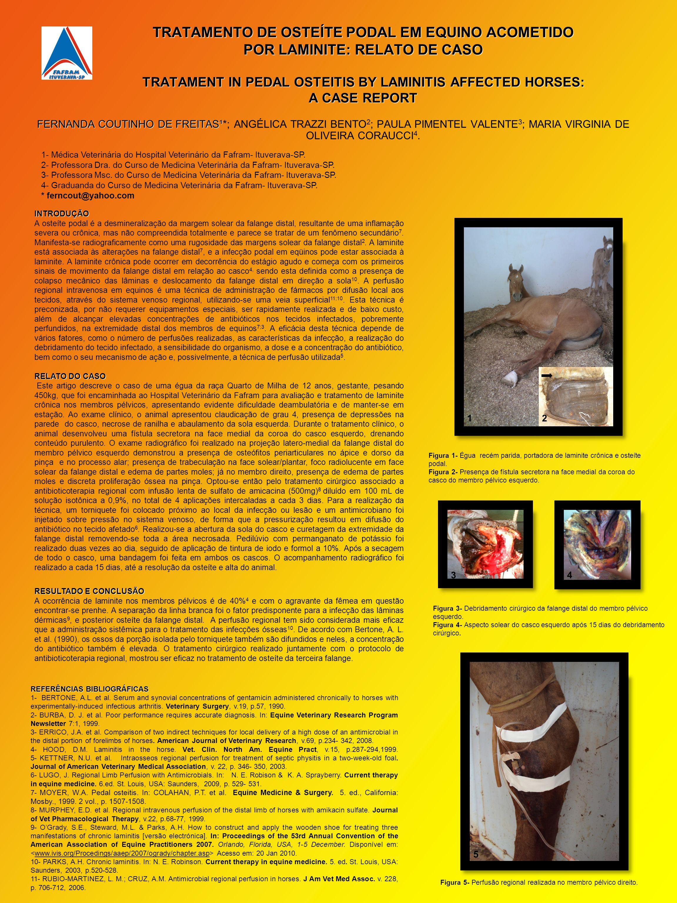 TRATAMENTO DE OSTEÍTE PODAL EM EQUINO ACOMETIDO POR LAMINITE: RELATO DE CASO TRATAMENT IN PEDAL OSTEITIS BY LAMINITIS AFFECTED HORSES: A CASE REPORT F