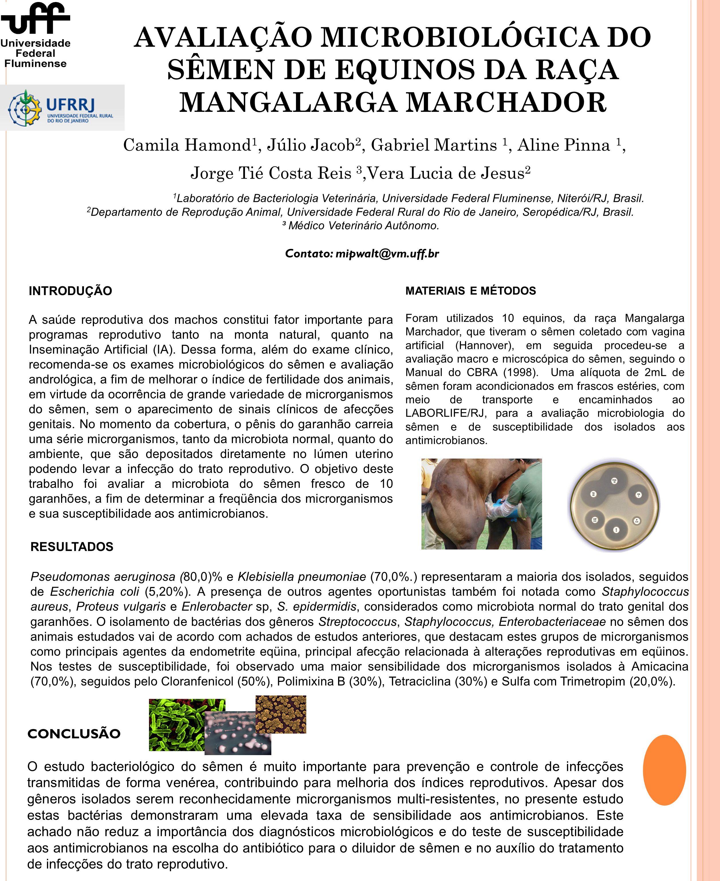 AVALIAÇÃO MICROBIOLÓGICA DO SÊMEN DE EQUINOS DA RAÇA MANGALARGA MARCHADOR Camila Hamond 1, Júlio Jacob 2, Gabriel Martins 1, Aline Pinna 1, Jorge Tié