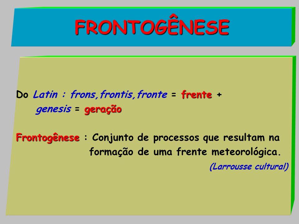 FRONTOGÊNESE frente Do Latin : frons,frontis,fronte = frente + geração genesis = geração Frontogênese Frontogênese : Conjunto de processos que resulta
