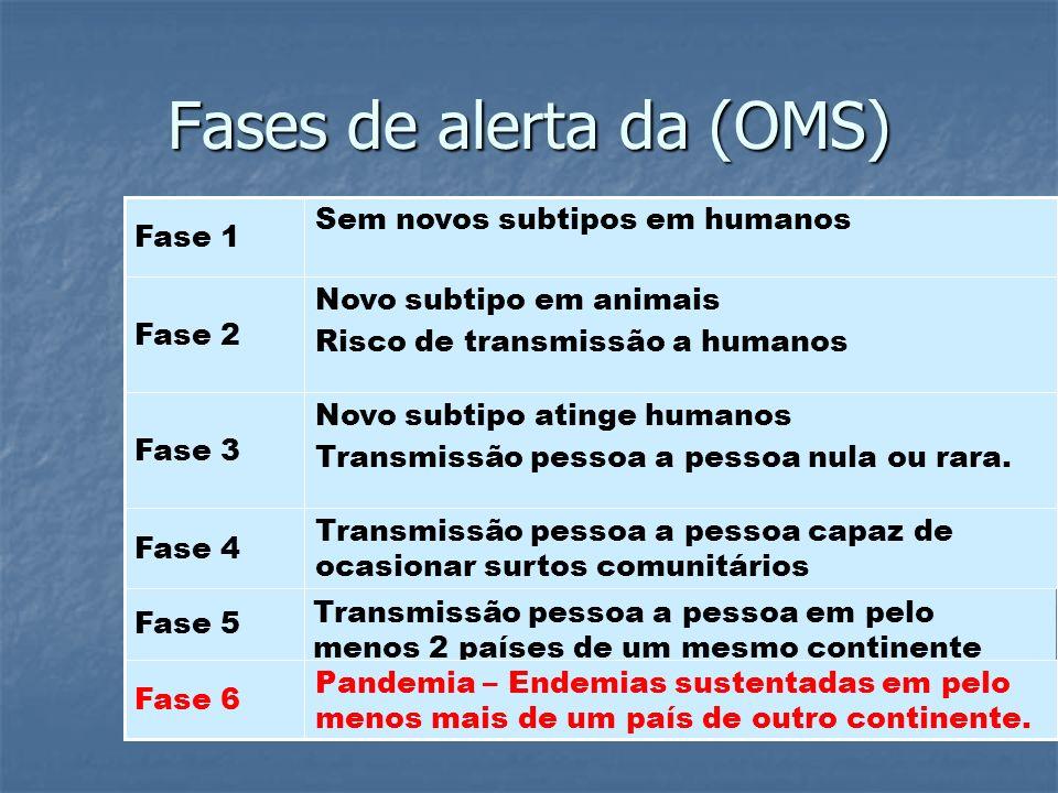 SITUAÇÃO NO BRASIL (15/07/09) 6.938 CASOS 1.175 CONFIRMADOS 2 ÓBITOS