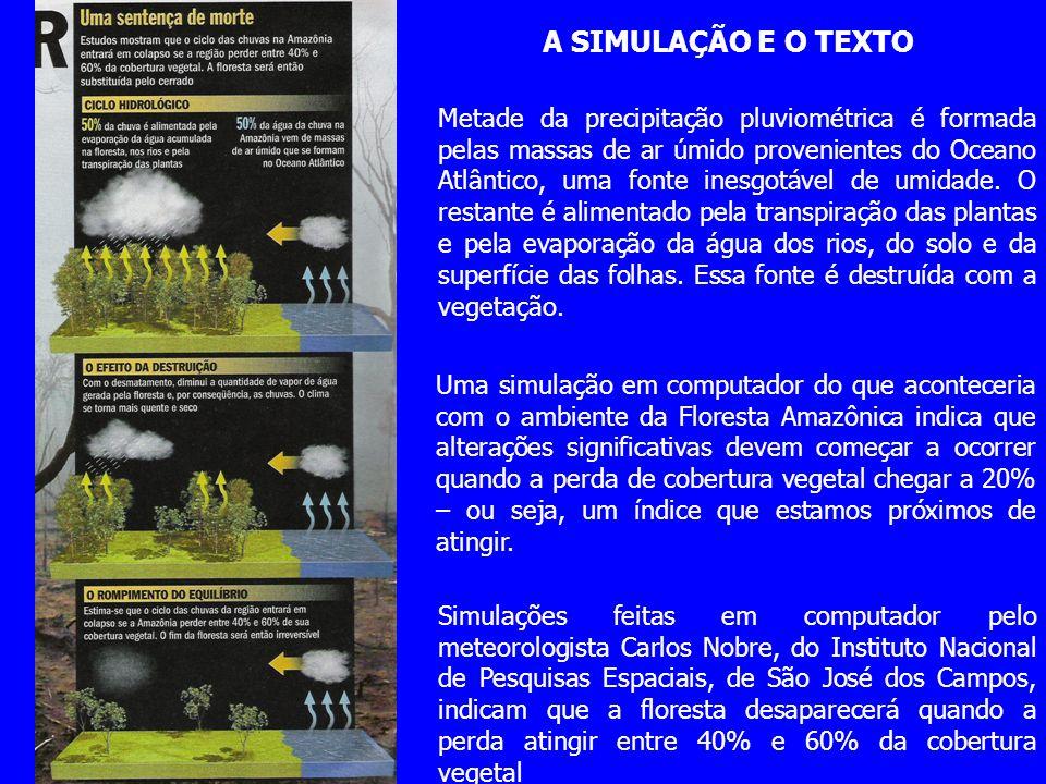 Simulações feitas em computador pelo meteorologista Carlos Nobre, do Instituto Nacional de Pesquisas Espaciais, de São José dos Campos, indicam que a